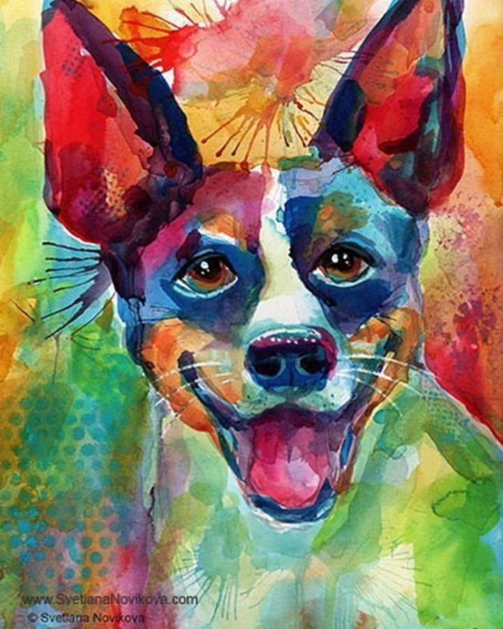 Watercolour Photograph - Happy Rat Terrier Watercolor Portrait by Svetlana Novikova