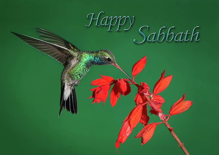 Happy Sabbath by James Capo for Foundation Outreach Internationa