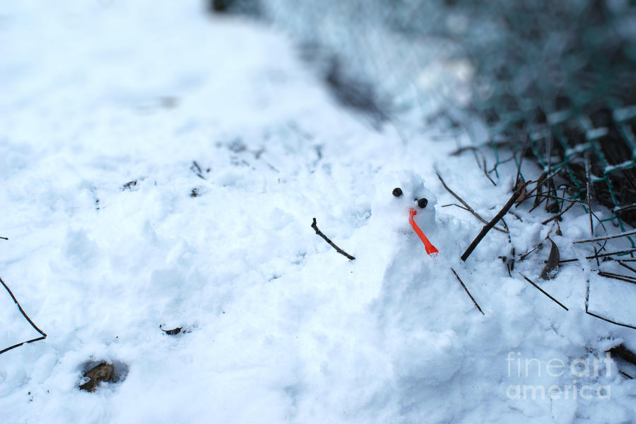 Winter Photograph - Happy Snow Man by Sun Wu
