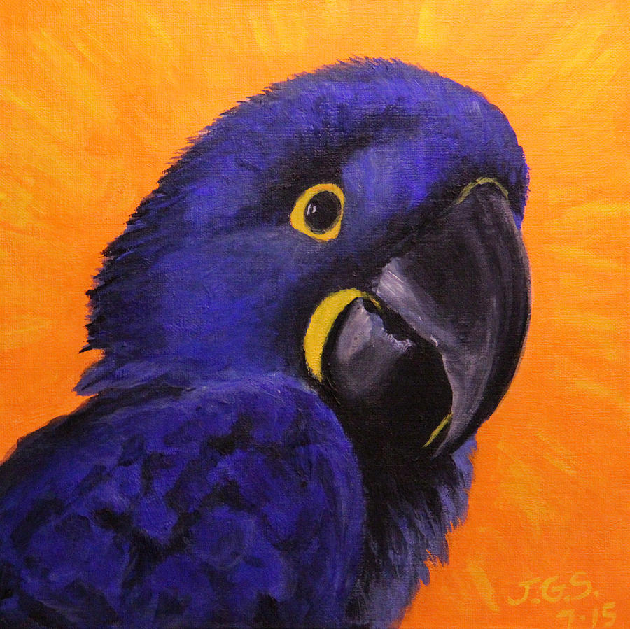Happy the Hyacinth Macaw by Janet Greer Sammons