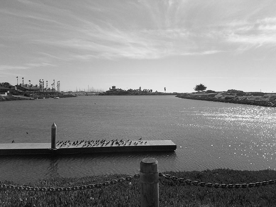 Landscape Photograph - Harbor At High Noon by Reed Orman