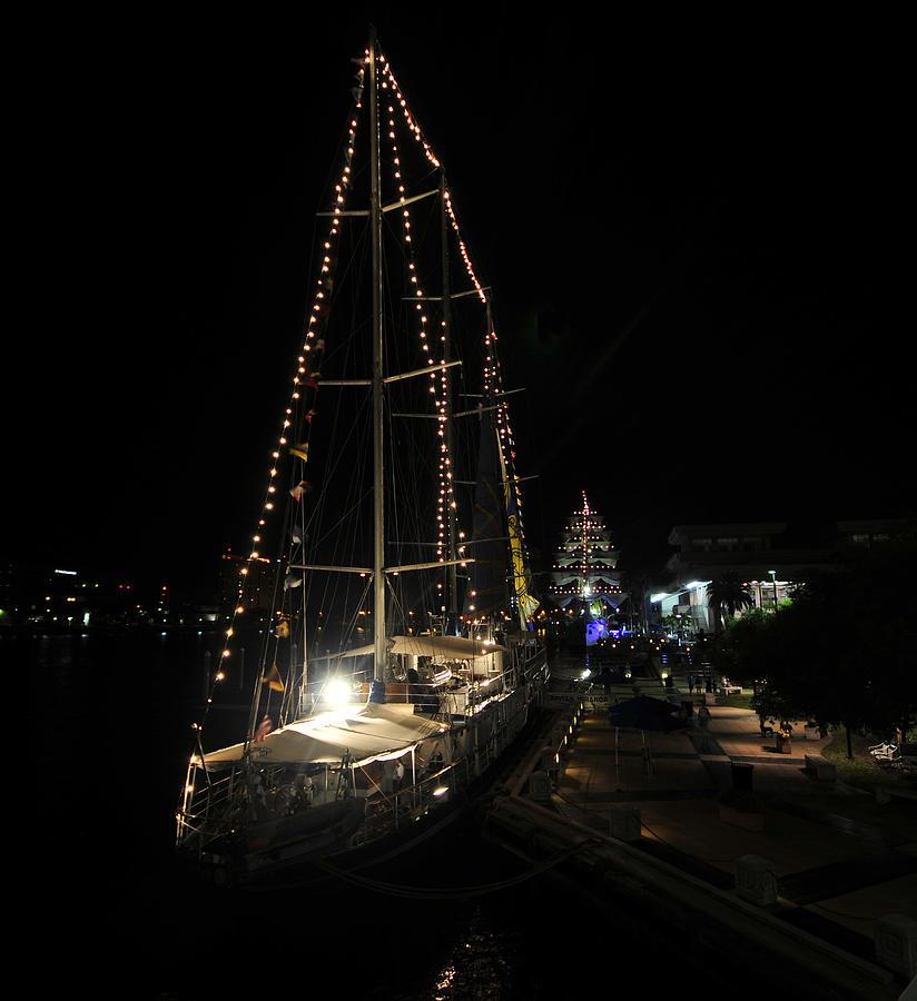 Harbor Photograph - Harbor Night by David Lee Thompson