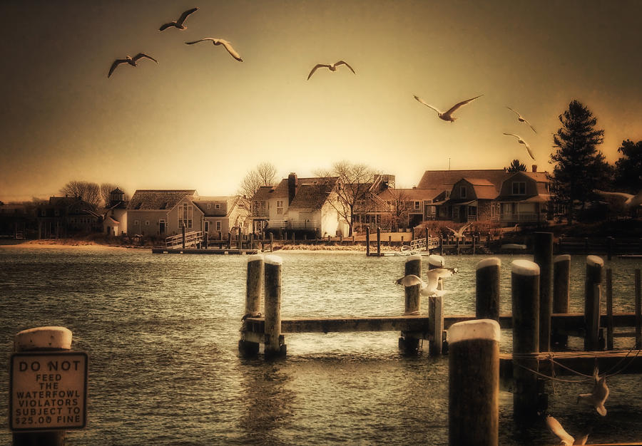 Cape Cod Photograph - Harbor View by Gina Cormier