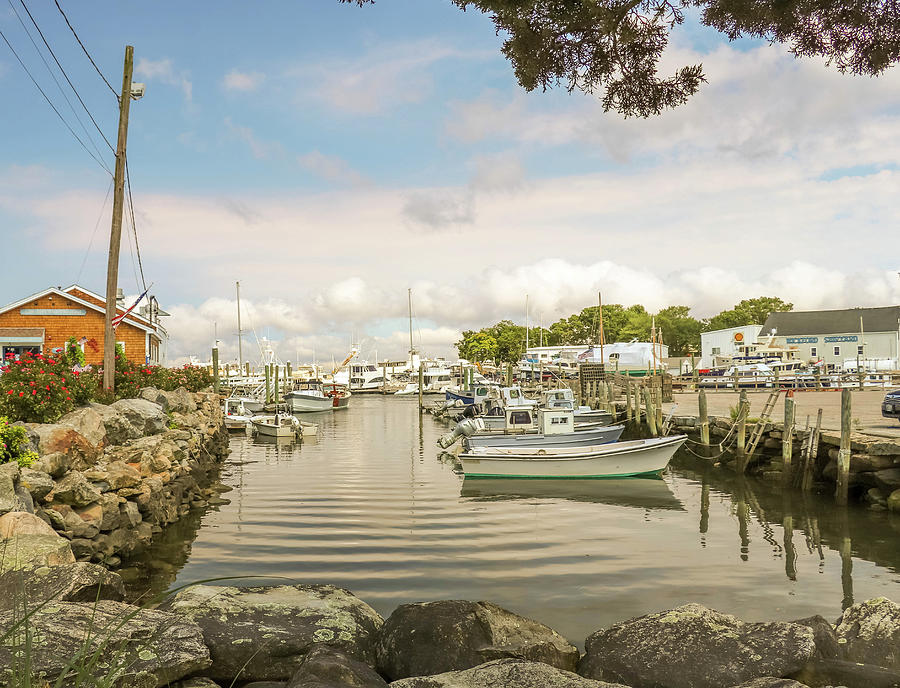 Harbor View by MaryAnn Barry