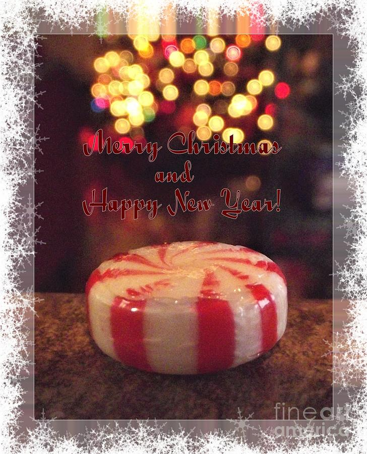 peppermint candy photograph hard candy christmas by dee winslow - Hard Candy Christmas