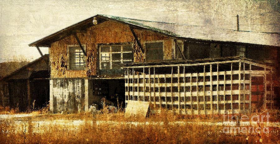 Farm Photograph - Hard Labor by Lois Bryan