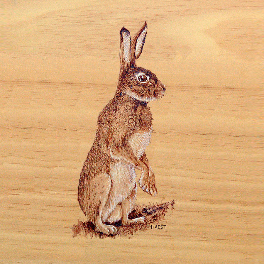 Hare Pillow/bag by Ron Haist
