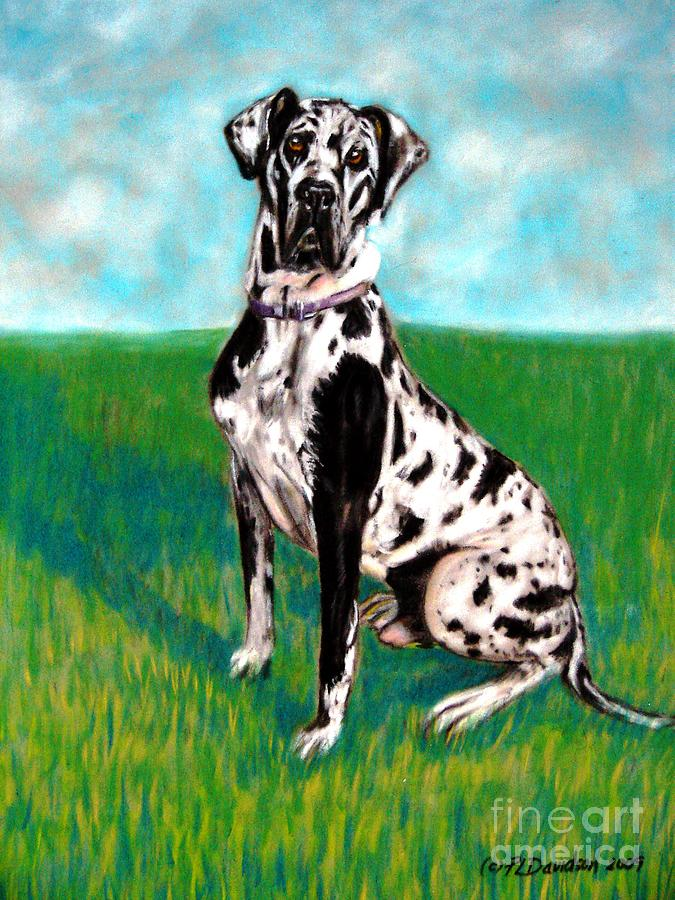 Large Dog Breeds Painting - Harlequin Great Dane by Patricia L Davidson