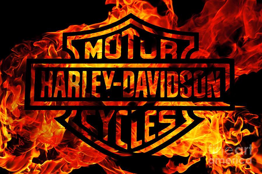 Motorcycle Digital Art - Harley Davidson Logo Flames by Randy Steele