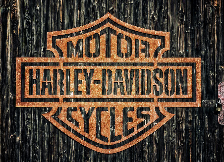 Harley-davidson Photograph - Harley - Davidson by Tama66