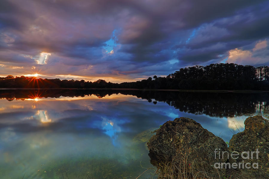 Water Photograph - Harnes Pond by Rick Mann