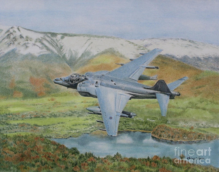 Harrier Over Derwentwater by Elaine Jones