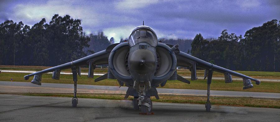 Harrier Photograph by Paul Owen
