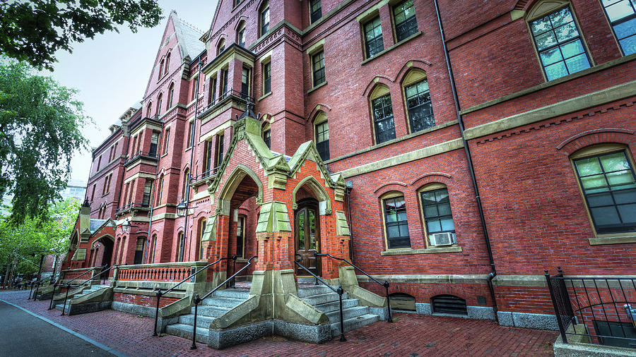 Harvard Brains Photograph