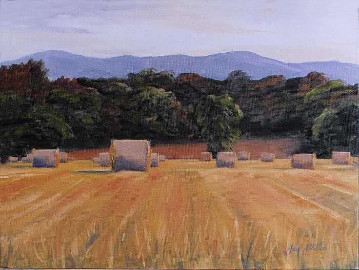 Harvest Painting by Jay Johnson