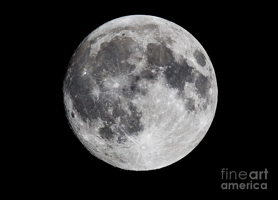 Canon Photograph - Harvest Moon At 99 Pct. Waxing Gibbous by Ricky L Jones