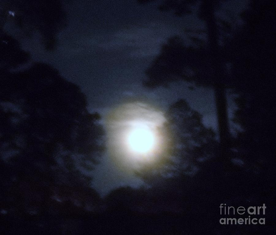 Moon Photograph - Harvest Moon by Leslie Revels