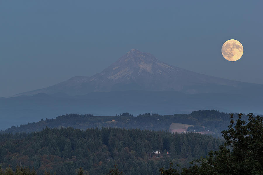 Harvest Moon Photograph - Harvest Moon Rising over Mount Hood by David Gn