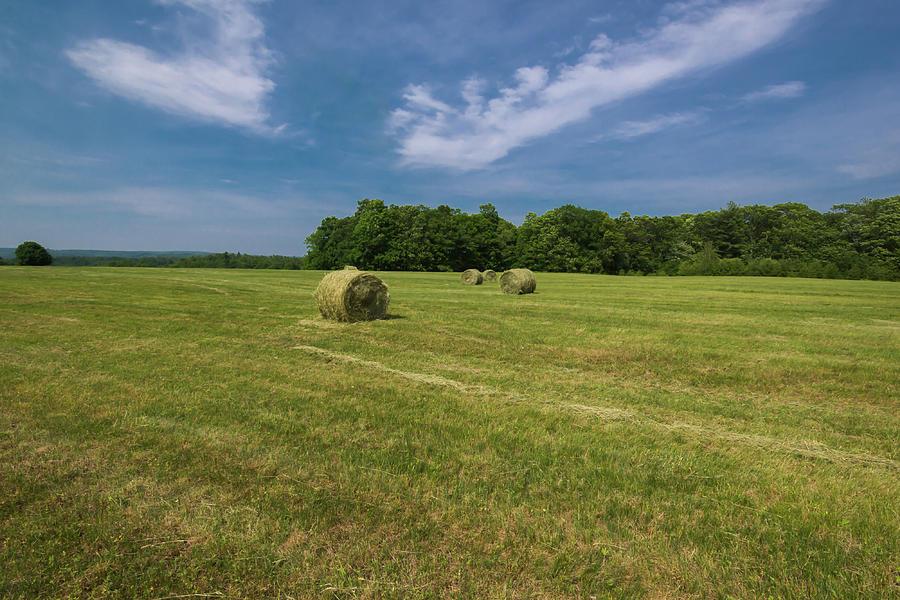 Harvest Time by Robert McKay Jones