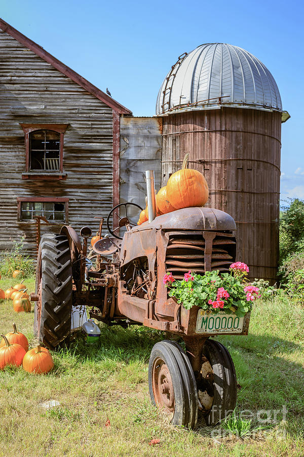 Tractor Photograph - Harvest Time Vintage Farm With Pumpkins by Edward Fielding