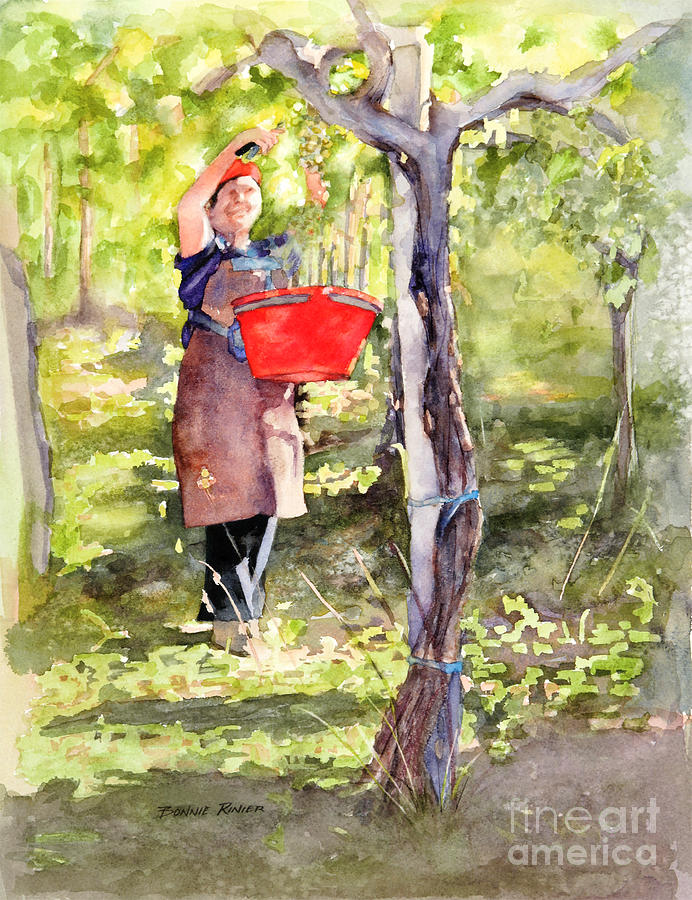 Harvest Painting - Harvesting Annas Grapes by Bonnie Rinier