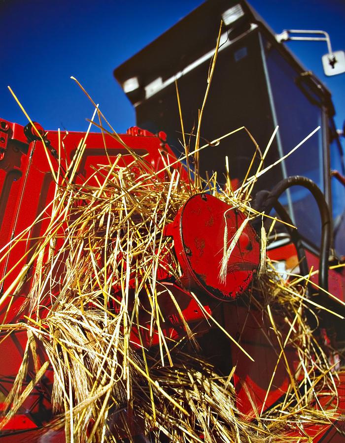 Combine Photograph - Harvesting by Meirion Matthias