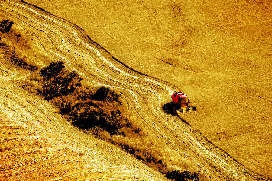 Combine Photograph - Harvesting The Crop by Mal Bray