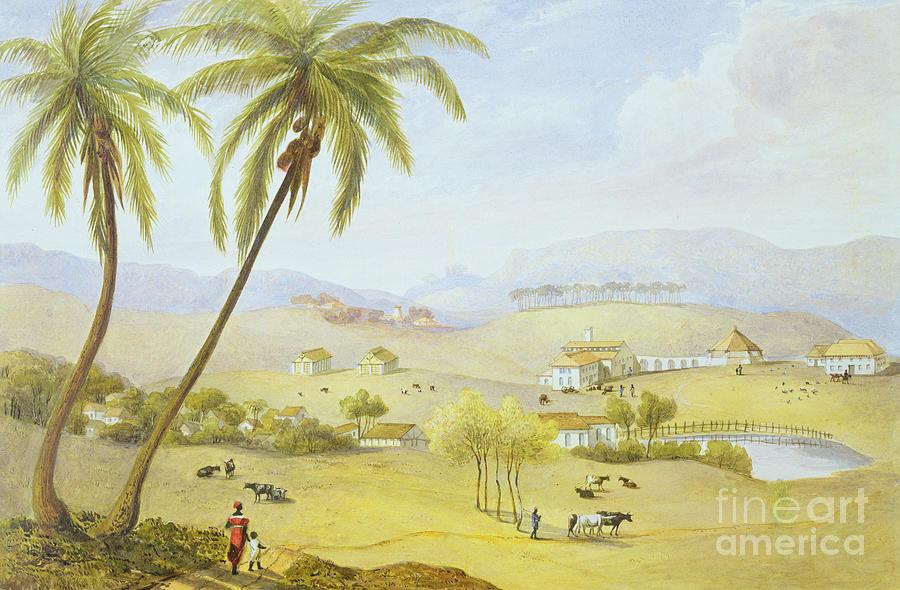 Haughton Painting - Haughton Court - Hanover Jamaica by James Hakewill