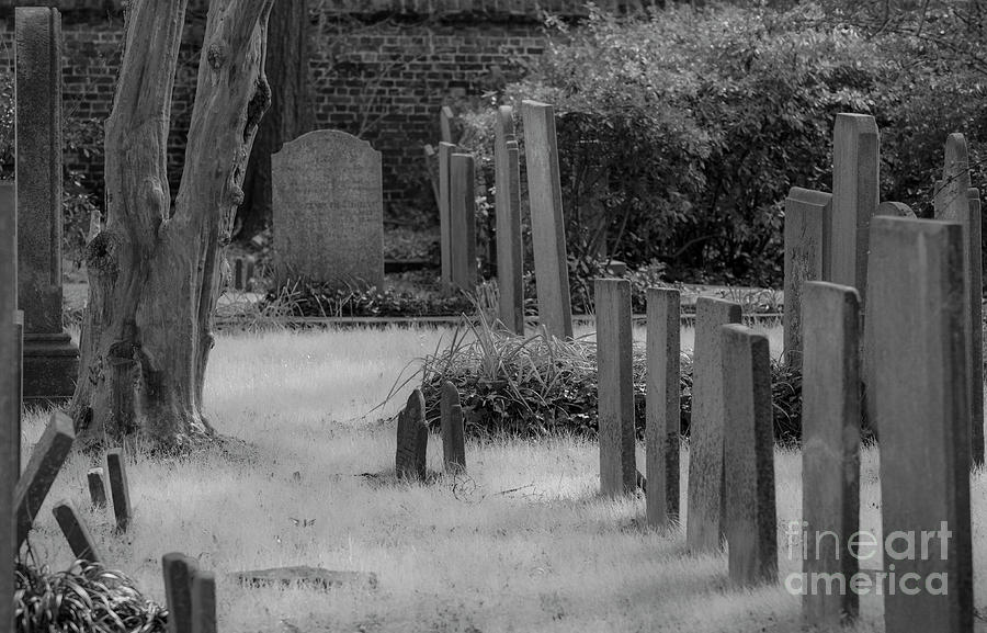 Haunted Charleston Cemetery Photograph