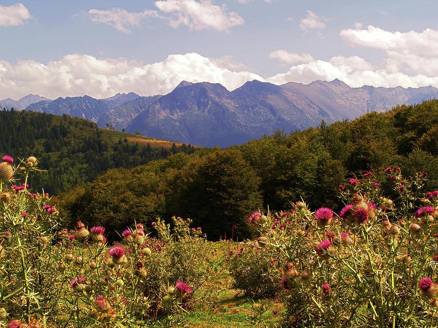 Mountains Photograph - Haut Pyrenees by Steve Watson