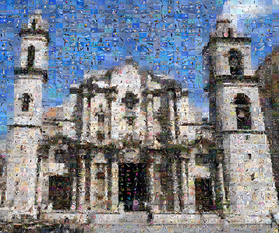 Mosaic Digital Art - Havana Cathedral by Gilberto Viciedo