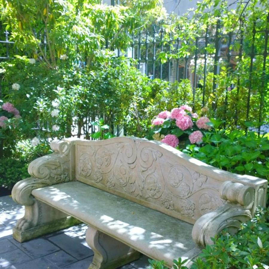 Decorative Photograph - Have A Seat In My Secret Garden. #patio by Shari Warren