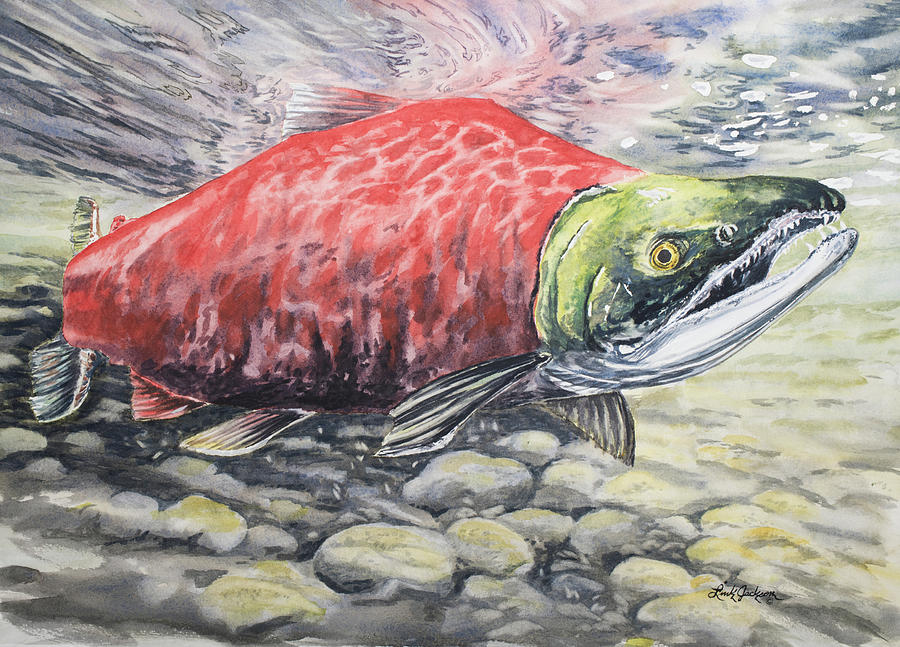 Have a Sockeye by Link Jackson