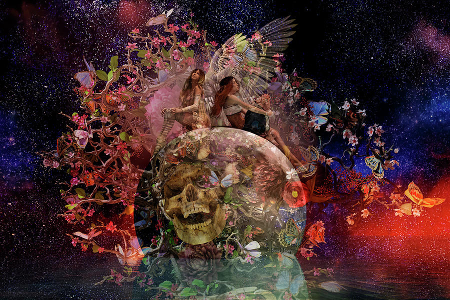 Skull Photograph - Have Your Tickets Out And Ready Betsy C Knapp by Betsy Knapp