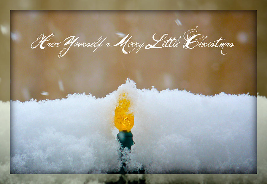 Season's Greetings Photograph - Have Yourself A Merry Little Christmas by Lisa Knechtel