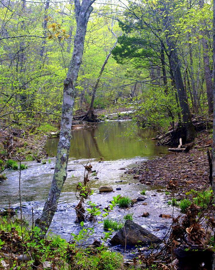 Ozarks Photograph - Haw Creek by Marty Koch