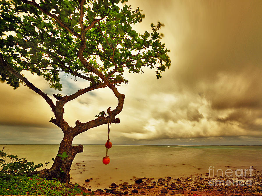 Hawaii Beach Tree by Von McKnelly