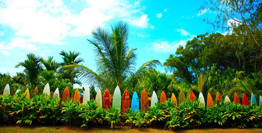 Outdoor Greeting Cards Photograph - Hawaii Surfboard Fence Photograph  by Michael Ledray