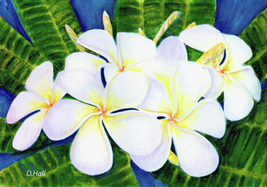 Plumeria Painting - Hawaii Tropical Plumeria Flower  #208 by Donald k Hall