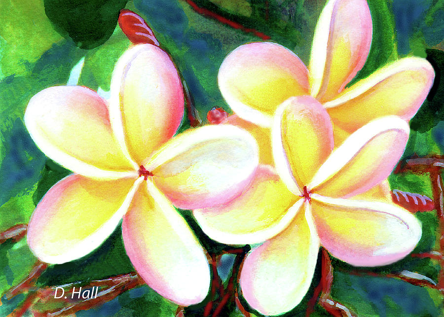 Plumeria Painting - Hawaii Tropical Plumeria Flower #213 by Donald k Hall