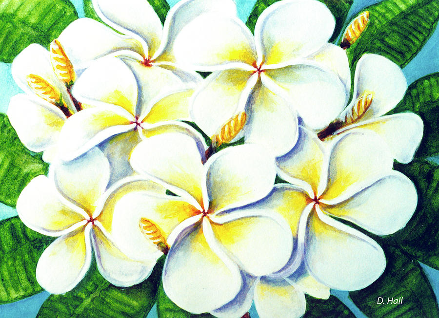 Plumeria Painting - Hawaii Tropical Plumeria Flower #224 by Donald k Hall