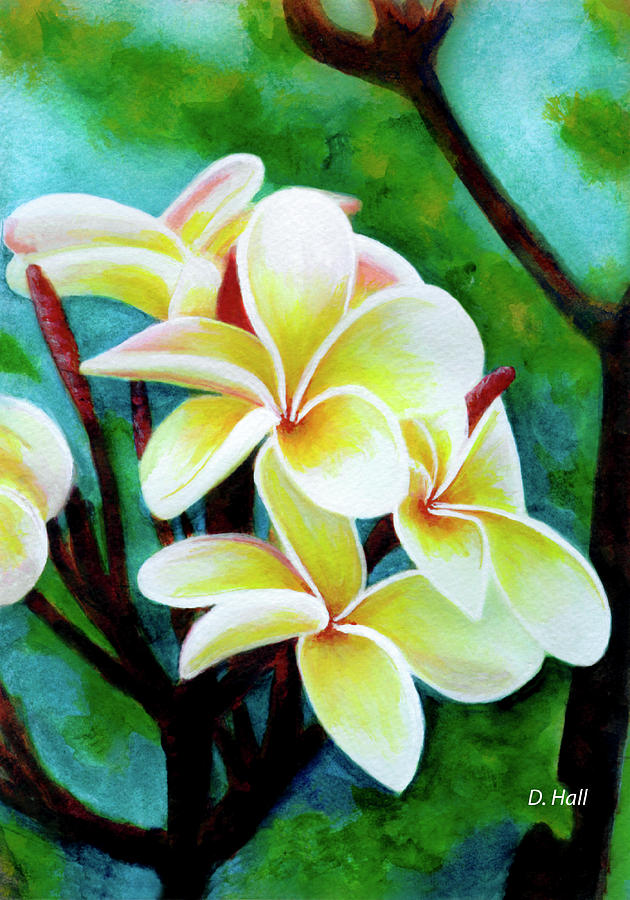 Plumeria Painting - Hawaii Tropical Plumeria Flower #225 by Donald k Hall