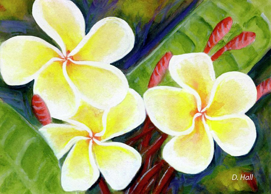 Plumeria Painting - Hawaii Tropical Plumeria Flower #298, by Donald k Hall