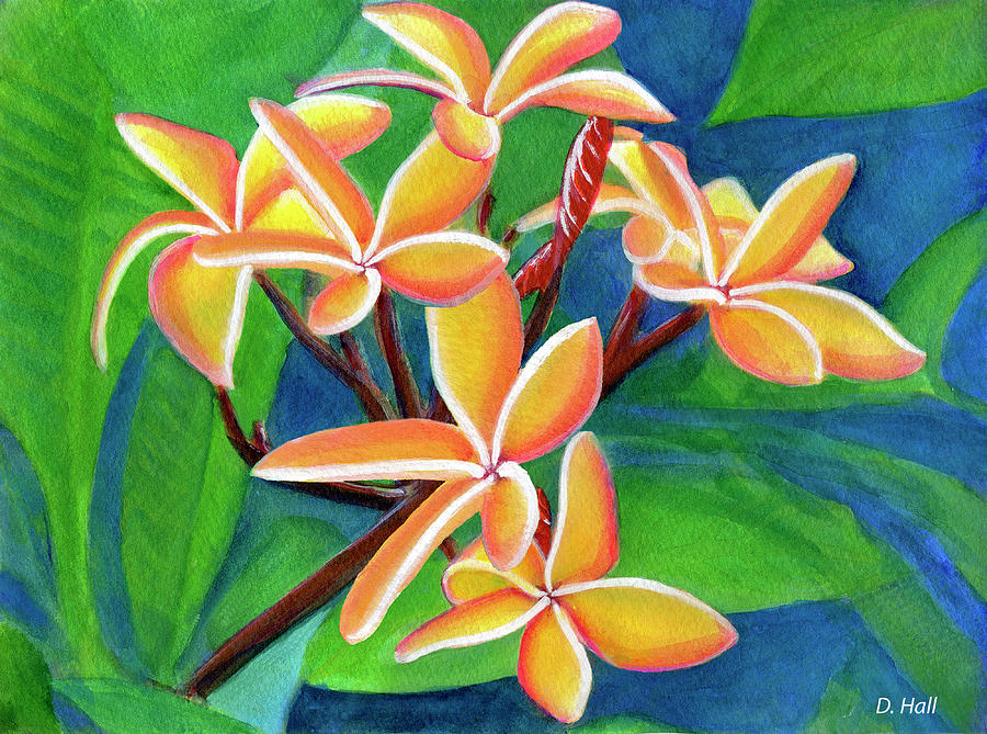 Plumeria Painting - Hawaii Tropical Plumeria Flowers #232 by Donald k Hall