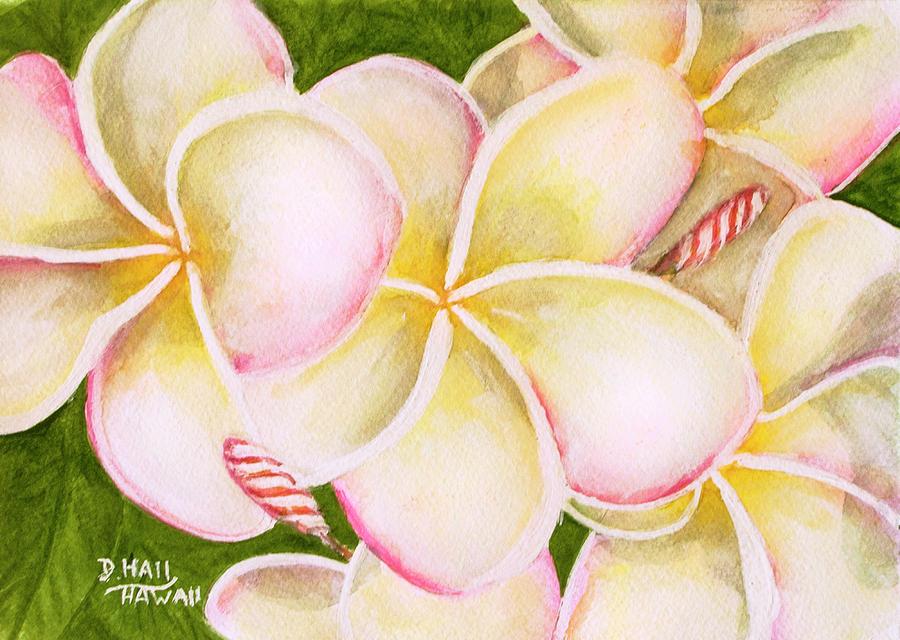 Plumeria Flowers Painting - Hawaiian Tropical Plumeria Flower #483 by Donald k Hall