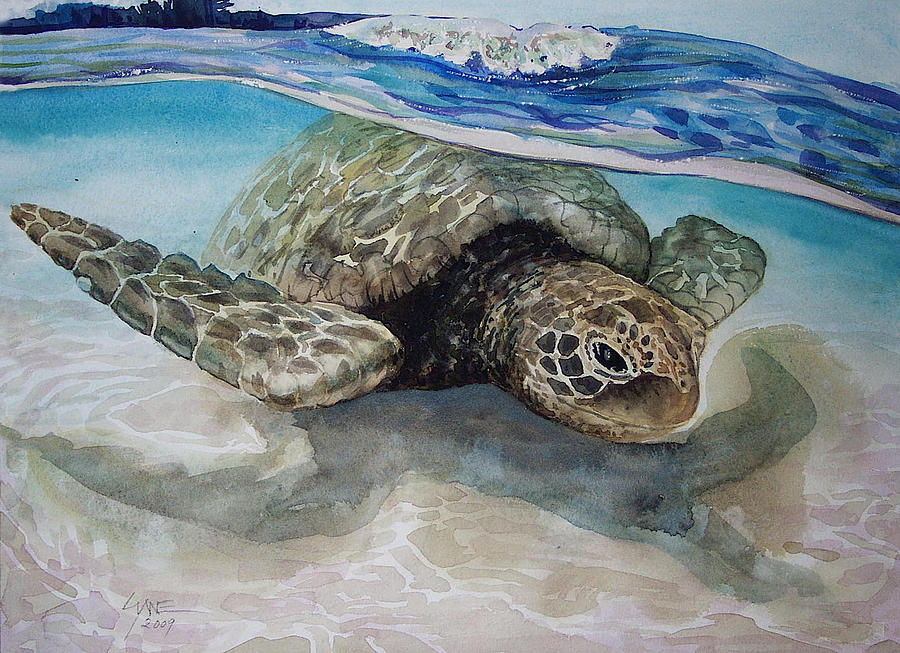 Hawaiin Turtle Painting by Lynne Haines
