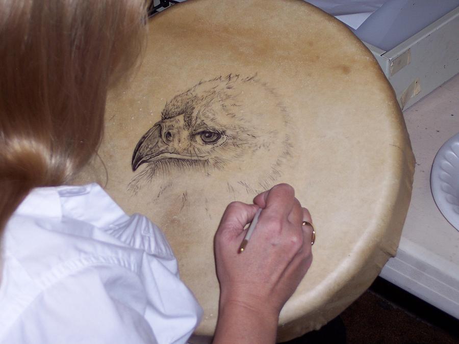 Hawk Mixed Media by Mary Favero