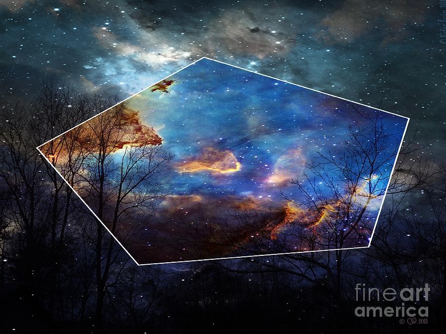 Hawking Sky Digital Art