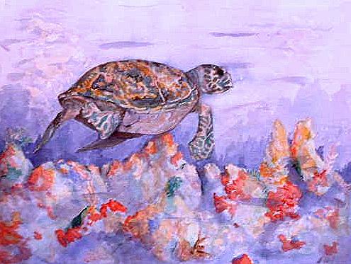 Hawksbill Painting - Hawksbill by Ladonna Idell