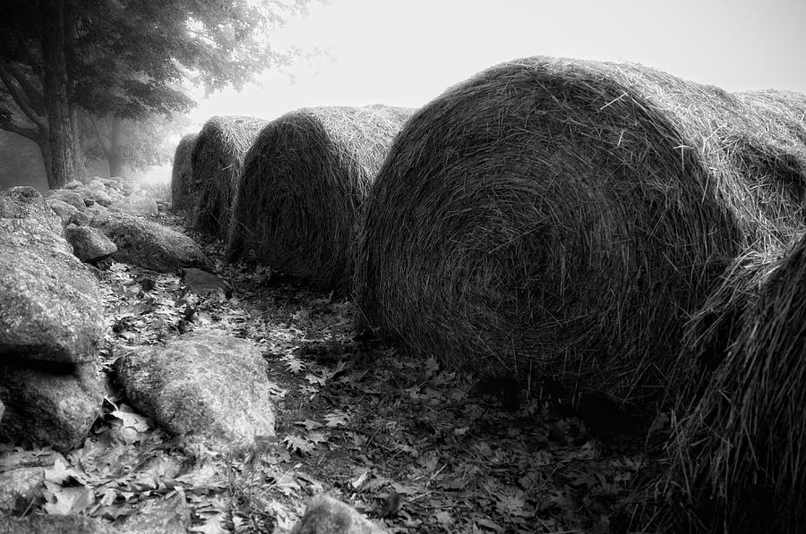Hay Photograph - Hay Bales Paxton Ma by Richard Danek